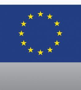 Постоянная лицензия ЕС
