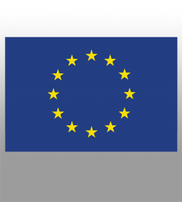 Permanent EU license