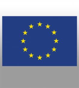 DAUERHAFTE EU LIZENZ